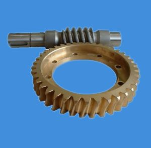 Plastic Screw Gear